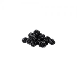 Organic blackberries Farmed by Nature